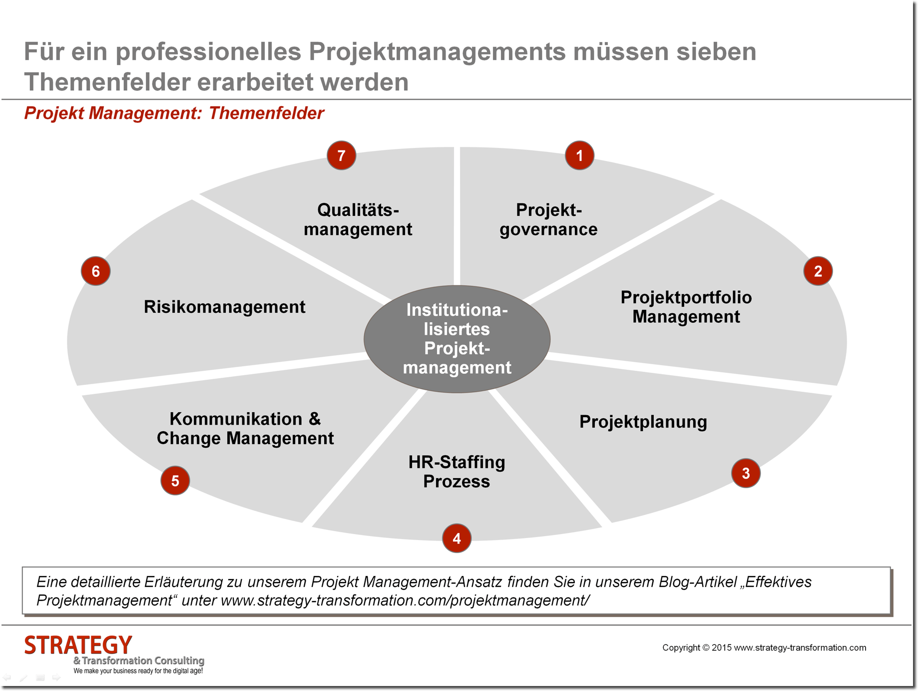Projekt Management Themenfelder
